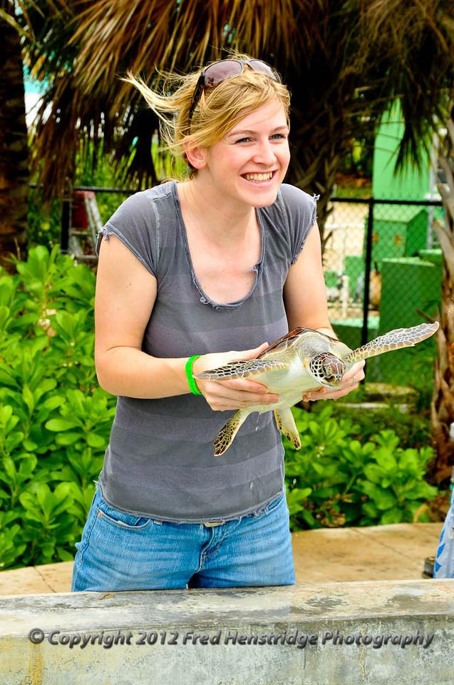We love turtles