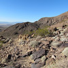 The views are beautiful.  The patch of light brown in the distance is the Eldorado Canyon dry lake bed.
