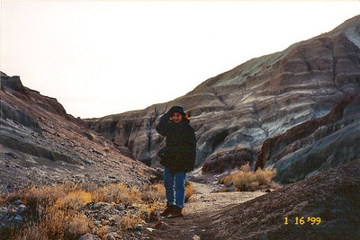 1/16/99 Owl Canyon Trail, Rainbow Basin Natural Area. San Bernardino County, CA