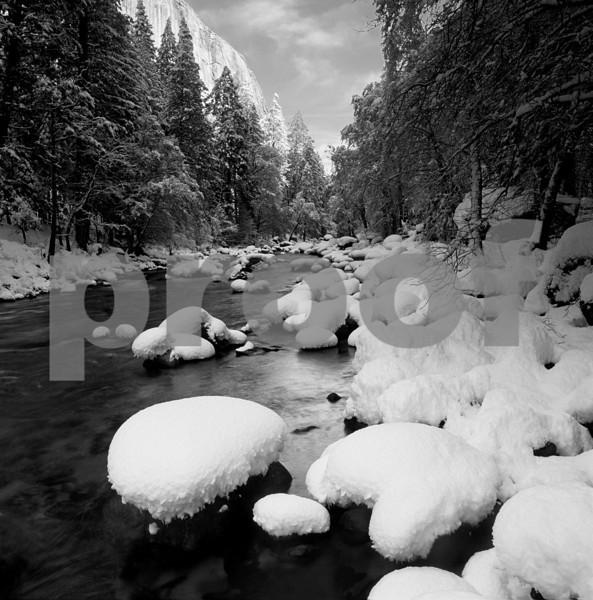 MERCED SNOW CLUMPS