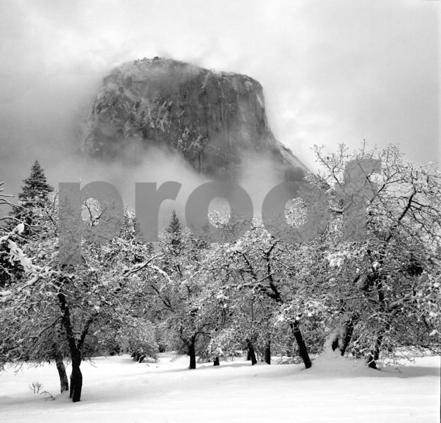 snow mist scene elcap