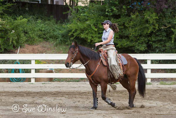 Ranch Versatility Clinic 2014