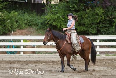 Ranch Versatility Clinic 2014
