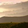 Sunset Ridges