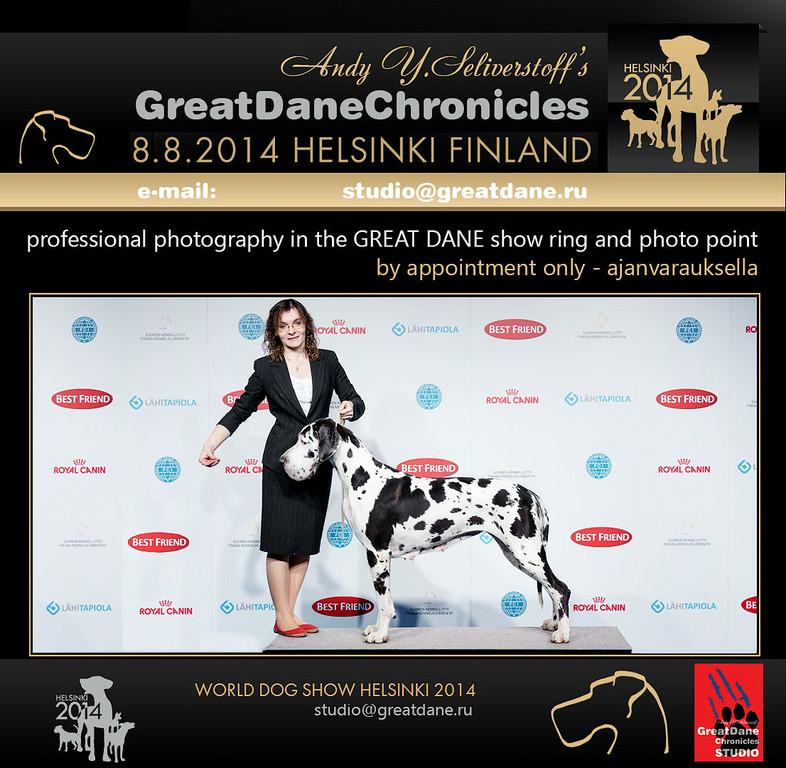 WORLD DOG SHOW 2014, Helsinki WDS2014_10-XL