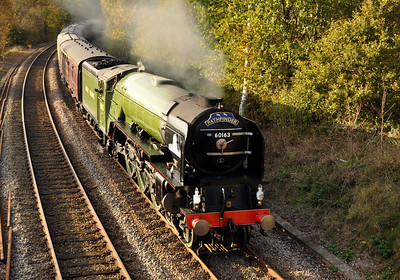 A1 Pacific 60613 Tornado heads towards Shalford to take on water, 7th November 2009