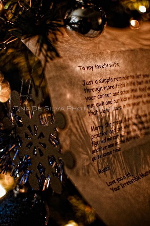 Christmas Letter1