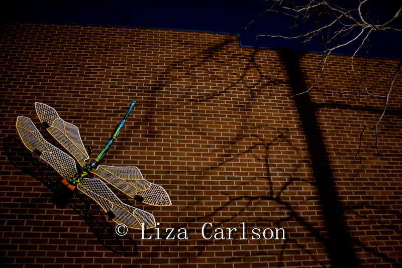 Giant Dragonfly Sculpture