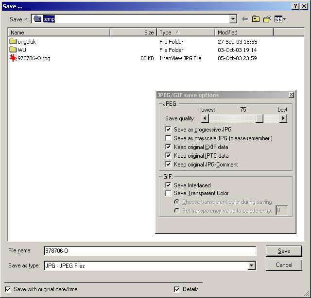 "<a href=""http://www.irfanview.com/"">Irfanview</a>'s SaveAs dialog box and options..."