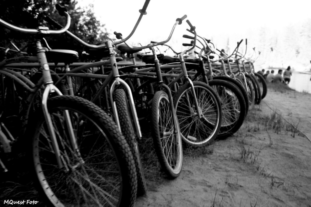 Bikes in a row  -  Hume Lake - Sequoia (a non space-age robot?)
