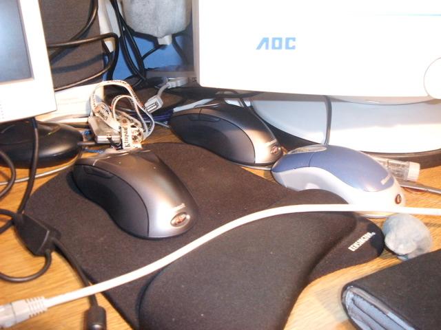 Dualing mice