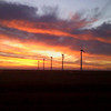 sunrise windfarm