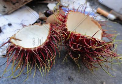 Rambutan Fruit Found on the street in NYC