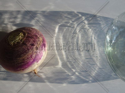 Turnip in Pitcher's Shadow