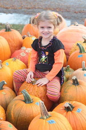 My granddaughter, Leah Adams of Huntertown, Ind., trying to find just the right pumpkin for Halloween!<br /> <br /> Photographer's Name: Diana Adams<br /> Photographer's City and State: Frankton, Ind.