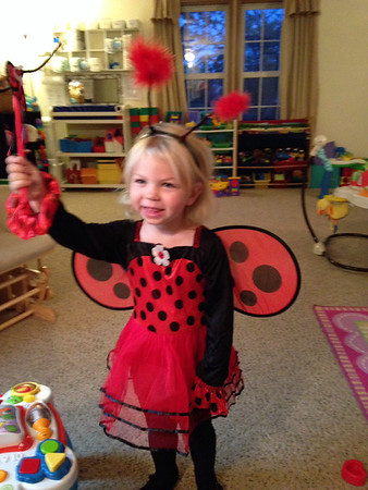 Hadley the Ladybug<br /> <br /> Photographer's Name: Lindsay Kinsinger<br /> Photographer's City and State: Anderson, Ind.
