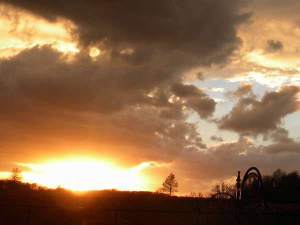 Beauty after the storm, Nov. 17.<br /> <br /> Photographer's Name: Rita Drews<br /> Photographer's City and State: Anderson, Ind.