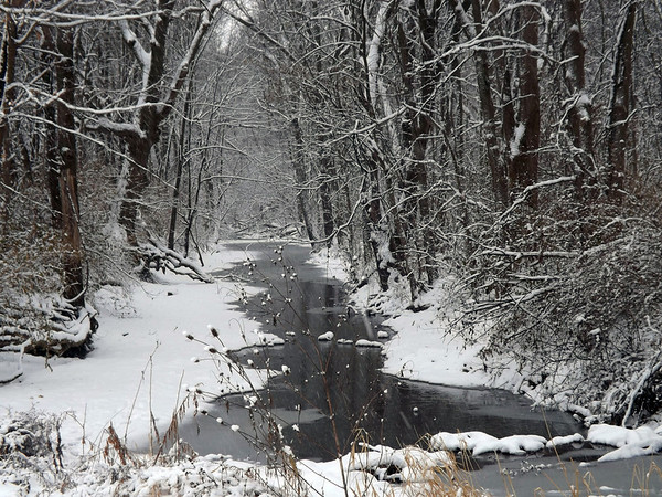 """""""The Quiet of December,"""" at my farm in Richland Township.<br /> <br /> Photographer's Name: J.R. Rosencrans<br /> Photographer's City and State: Alexandria, Ind."""