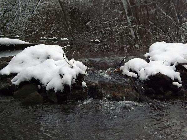 Killbuck Creek after the snow        Richland Twd.<br /> <br /> Photographer's Name: J.R.  Rosencrans<br /> Photographer's City and State: Alexandria, IN