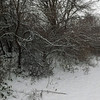 December snow, taken at my farm in Richland Township.<br /> <br /> Photographer's Name: J.R.  Rosencrans<br /> Photographer's City and State: Alexandria, Ind.