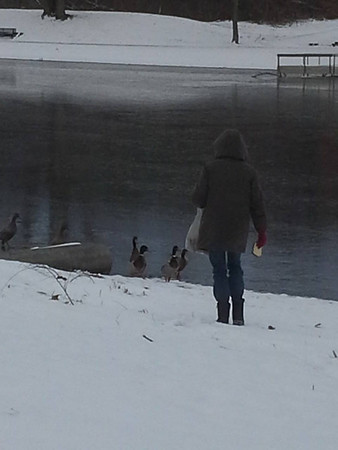 My mom dagmar feeding the ducks that dont leave for the winter!<br /> <br /> Photographer's Name: Sheelah Schmidt<br /> Photographer's City and State: Anderson, Ind.