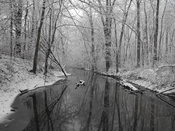 Killbuck Creek snow, taken at my farm in Richland Township.<br /> <br /> Photographer's Name: J.R.  Rosencrans<br /> Photographer's City and State: Alexandria, Ind.
