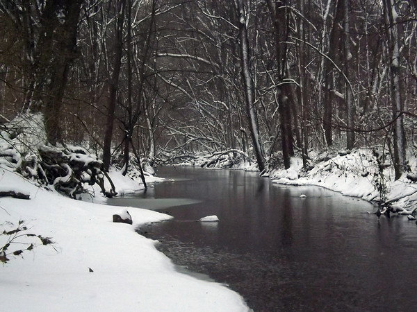 Cold Killbuck Creek in January.<br /> <br /> Photographer's Name: J.R. Rosencrans<br /> Photographer's City and State: Alexandria, Ind.