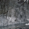 Hoore frost on Killbuck Creek in Richland Township.<br /> <br /> Photographer's Name: J.R. Rosencrans<br /> Photographer's City and State: Alexandria, Ind.