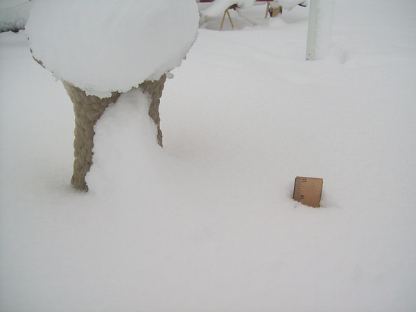 Thirteen inches of snow in Frankton, Ind.<br /> <br /> Photographer's Name: Karen McCord<br /> Photographer's City and State: Frankton, Ind.