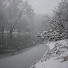 Along the White River during the snowfall on January 5, 2014.<br /> <br /> Photographer's Name: Rachel Landers<br /> Photographer's City and State: Anderson, Ind.