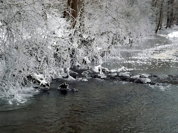 Hoore frost on Killbuck Creek at my farm in Richland Township.<br /> <br /> Photographer's Name: J.R. Rosencrans<br /> Photographer's City and State: Alexandria, Ind.