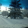 Ole Man Winter<br /> <br /> Photographer's Name: Phyllis Goettman<br /> Photographer's City and State: Markleville, Ind.