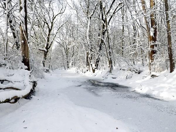 Killbuck Creek at minus 15.<br /> <br /> Photographer's Name: J.R. Rosencrans<br /> Photographer's City and State: Alexandria, Ind.