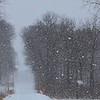 During the snowstorm Thursday afternoon in southern Madison County.<br /> <br /> Photographer's Name: Colleen Sanders Brown<br /> Photographer's City and State: Anderson, Ind.