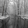 Little Killbuck Creek (Richland Twd)<br /> <br /> Photographer's Name: J.R. Rosencrans<br /> Photographer's City and State: Alexandria, IN