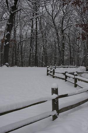 Mounds State Park  Patti Safford Anderson IN<br /> <br /> Photographer's Name: Patti Safford<br /> Photographer's City and State: Anderson, IN