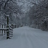 a winter wonderland. a picture of the  lane to my house.<br /> <br /> Photographer's Name: Courtney Perkins<br /> Photographer's City and State: Anderson, IN