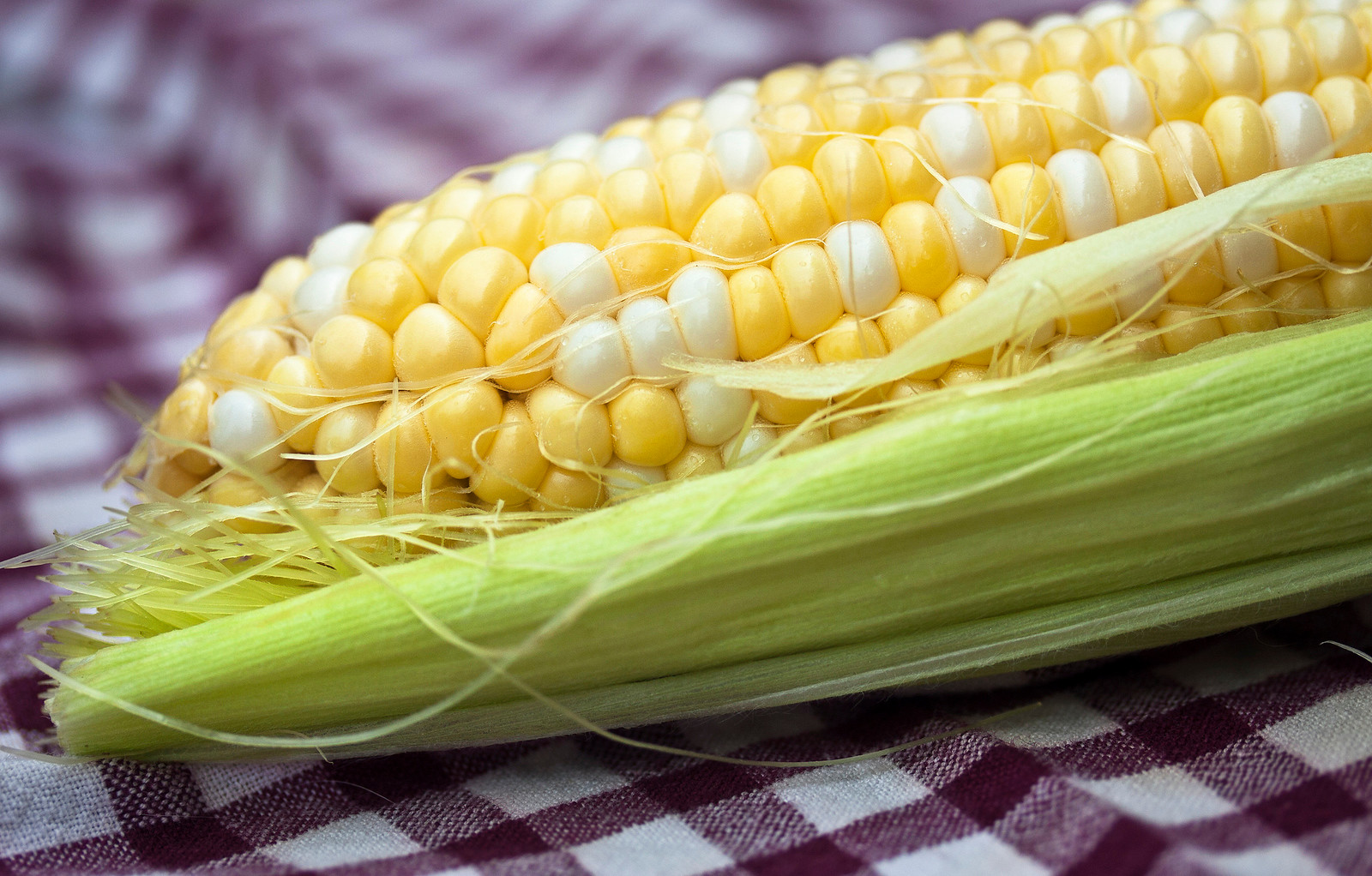 Living With a Corn Allergy