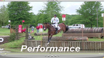 High Performance Horses