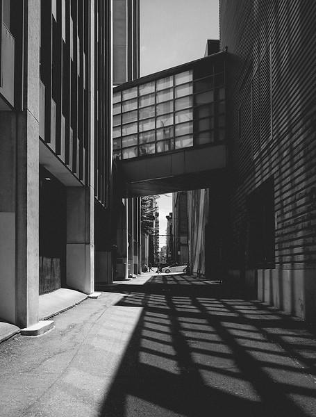 Lane Reflections