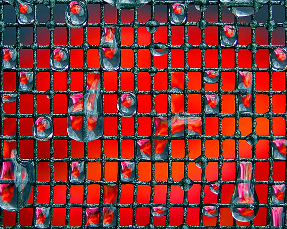 I saw a very similar idea being used in portrait pics (Keetley's 1000 faces) and thought I could make it work as a Macro theme.<br /> This is a piece of flyscreen strung up about 30 cm in front of a vase containing a red/orange rose and a pink rose. I've then used as shallow a d.o.f as I could to focus just on the screen (and the drops I had sprayed onto it).<br /> I was lucky enough to win the Macro theme at my local photography clubs November 2007 meet with this shot.