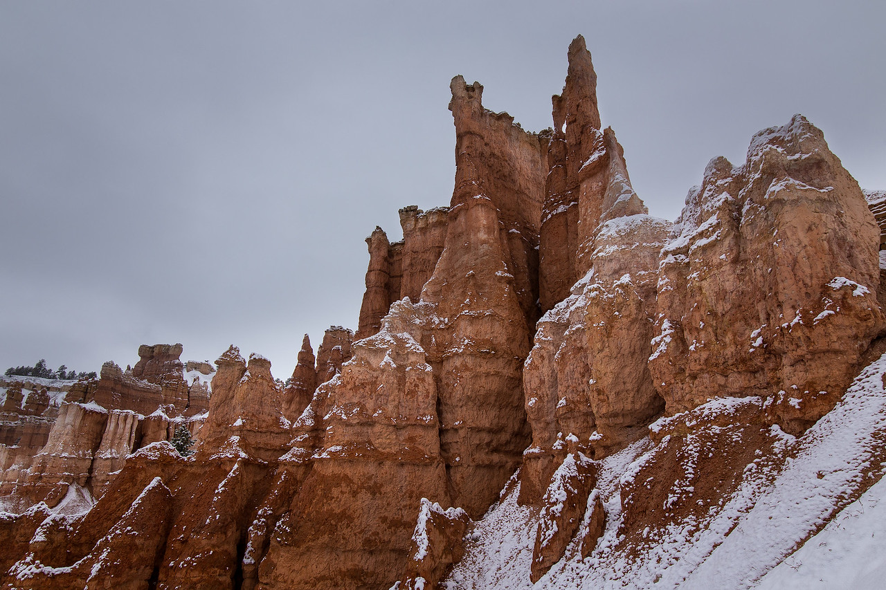 Snow-Dusted Hoodoos, Bryce Canyon