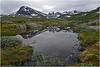Koldedalen i Jotunheimen