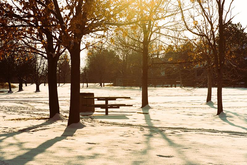 Winter sun setting in the park