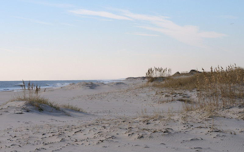 Assateague Island Virginia  12/4/09