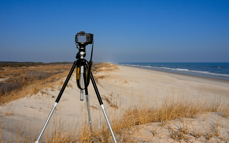 Assateague Island Virginia. 1/29/09