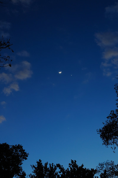 The Moon, Venus and Jupiter near the bottom
