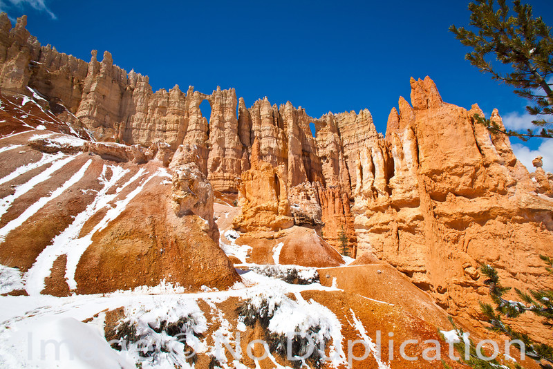Wall of Windows, Bryce Canyon National Park