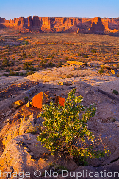 Courthouse Wash, Arches National Park