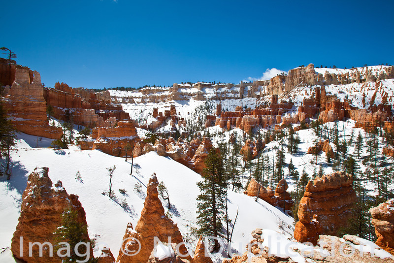 Bryce Canyon Snowscape, Bryce Canyon National Park